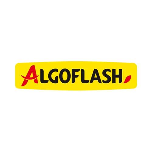algoflash logo