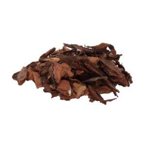 bark xl eclat de pin wetfarm terrarium