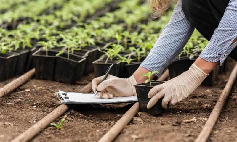 bio technology engineering solution auxine jardinerie alternative colmar