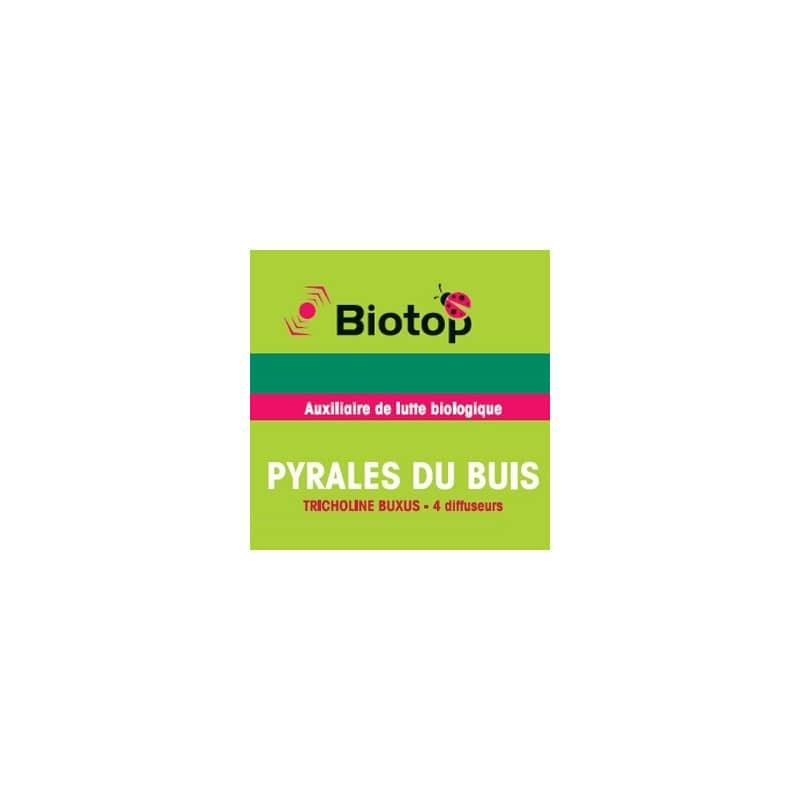 biotop bioline insectes auxiliaires pyrales du buis tricholine buxus diffuseurs