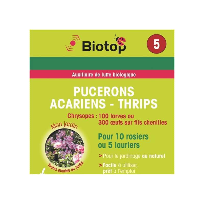 biotop bioline pucerons acariens thrips chrysopes larves