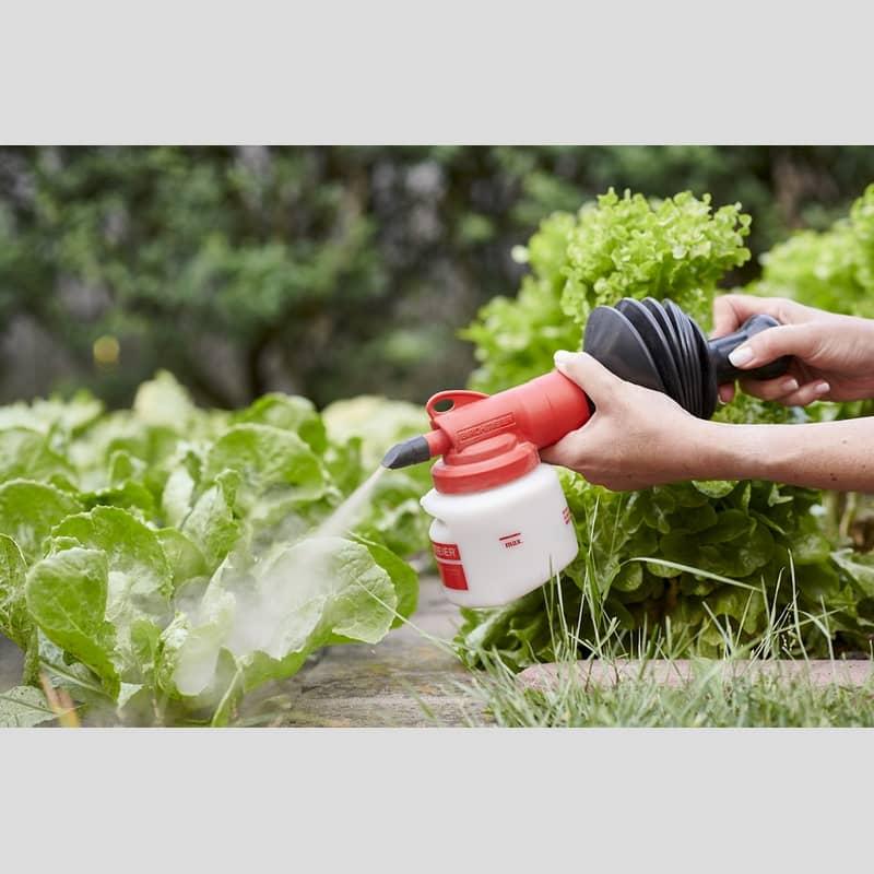 birchmeier suisse bobby application poudre diatomee argile auxine jardinerie alternative colmar