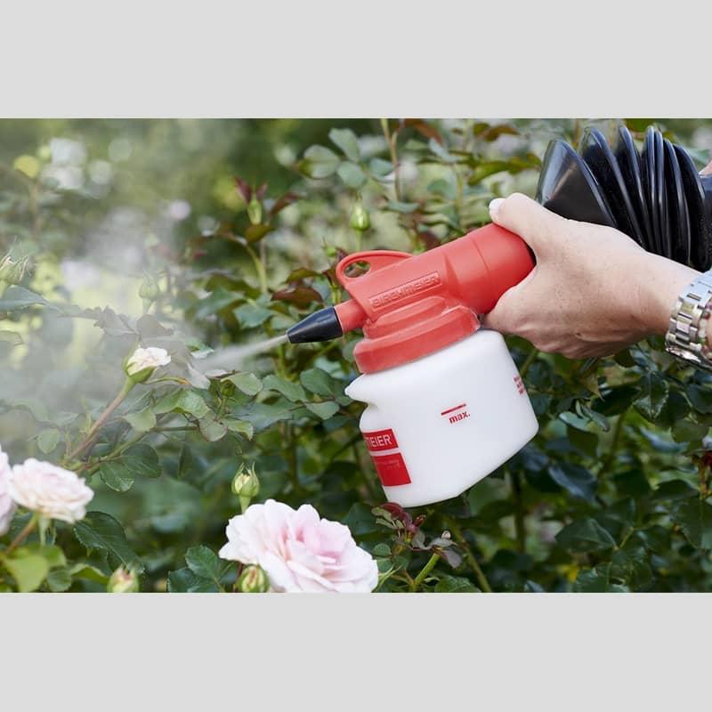 birchmeier suisse bobby poudrage plante soin auxine jardinerie alternative colmar