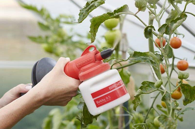 birchmeier suisse bobby poudreur poudreuse traitement des plantes auxine jardinerie alternative colmar