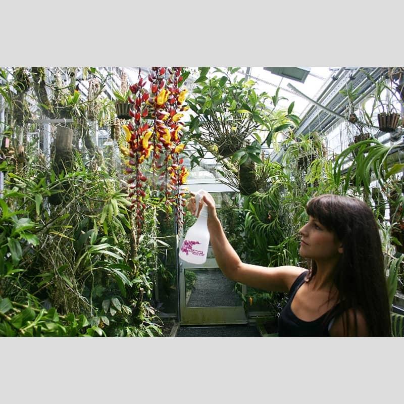 birchmeier suisse melua soin des orchidees pulverisateur auxine jardinerie alternative colmar