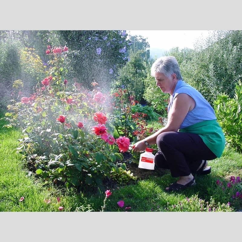 birchmeier suisse pulverisation des plantes auxine jardinerie alternative colmar