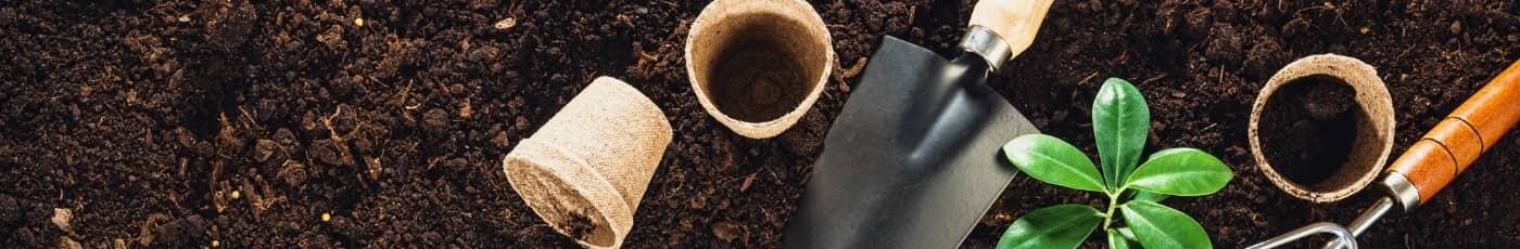 blog de jardinage