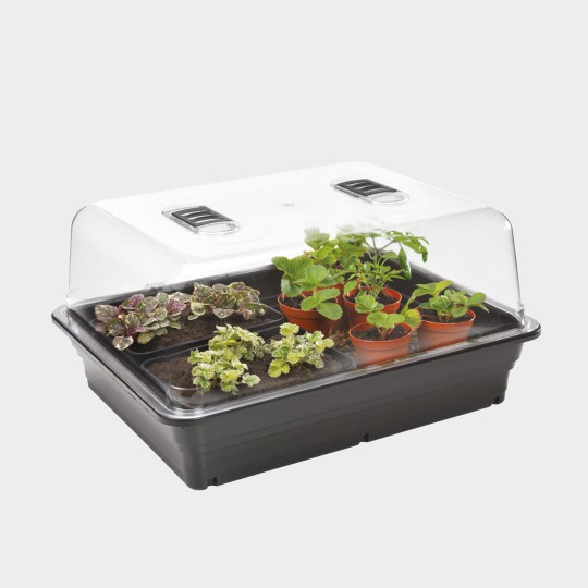 bouturage germination stewart serre variable en temperature surface 520x420mm hauteur 240mm 22w 2