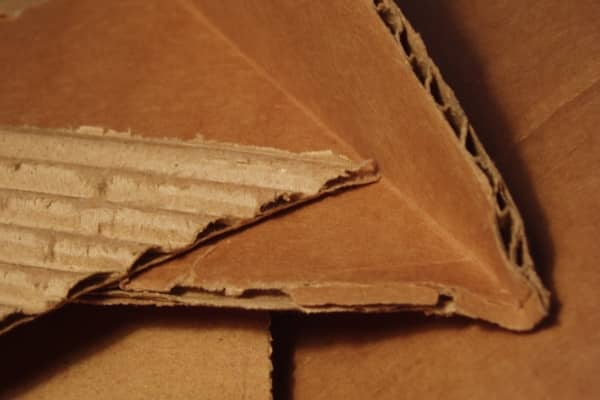 carton ondule piege carpocapse