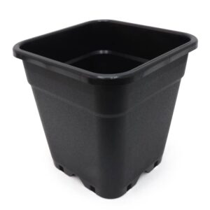 culmybmcu pot carre pure pot noir litres xxcm auxine jardinerie alternative colmar