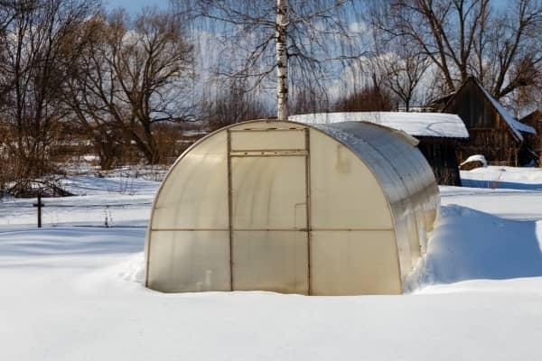 culture sous serre de jardin en hiver