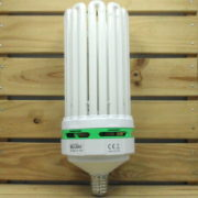 Éclairage Horticole Lampe CFL Lumii Envirogro - U10 300W 2700°K FLORAISON E40