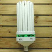 Éclairage Horticole Lampe CFL Lumii Envirogro - U10 300W 6400°K CROISSANCE E40