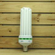 Éclairage Horticole Lampe CFL Lumii Envirogro - U6 130W 14000°K BOUTURAGE E40