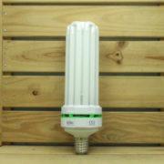 Éclairage Horticole Lampe CFL Lumii Envirogro - U6 130W 6400°K CROISSANCE E40