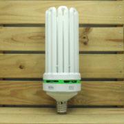 Éclairage Horticole Lampe CFL Lumii Envirogro - U8 200W 14000°K BOUTURAGE E40