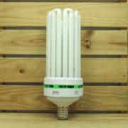 Éclairage Horticole Lampe CFL Lumii Envirogro - U8 200W 6400°K CROISSANCE E40