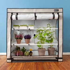 chambre de culture growtent growroom homebox auxine jardinerie alternative colmar