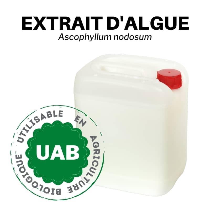 engrais liquide a base d algue ascophyllum nodosum biostimulant