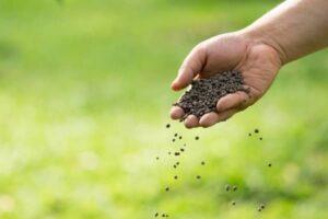 fertilisation organique pour agriculture biologique
