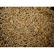 Grain De Seigle Non-Traite - 1Kg