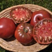 Graine Kokopelli - Tomates noires de mi-saison - Noire de Crimée - Solanum lycopersicum - P7311 - Sachet de 35 graines