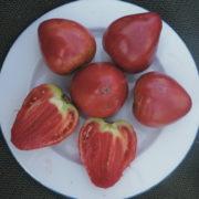 Graine Kokopelli - Tomates roses tardives - Cœur de Bœuf Akers - Solanum lycopersicum - P7104 - Sachet de 35 graines