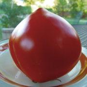 Graine Kokopelli - Tomates rouges de mi-saison - Cœur de Bœuf Rostova - Solanum lycopersicum - P6183 - Sachet de 35 graines