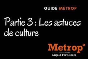 guide metrop partie astuces metrop