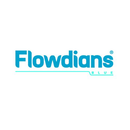 logo flowdians