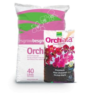 orchiata ecorce de pin kiwi bark nouvelle zelande orchidees substrat auxine jardinerie alternative colmar