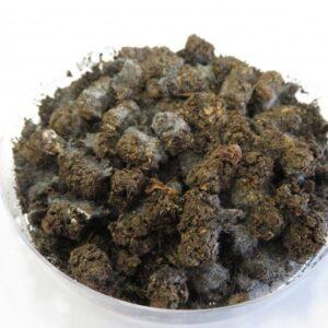 orgatec granules pellet terrial amendement organique biologique sol vie carbone auxine jardinerie alternative colmar