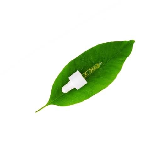 pheromone attractive ravageur piegeage biotop bioline
