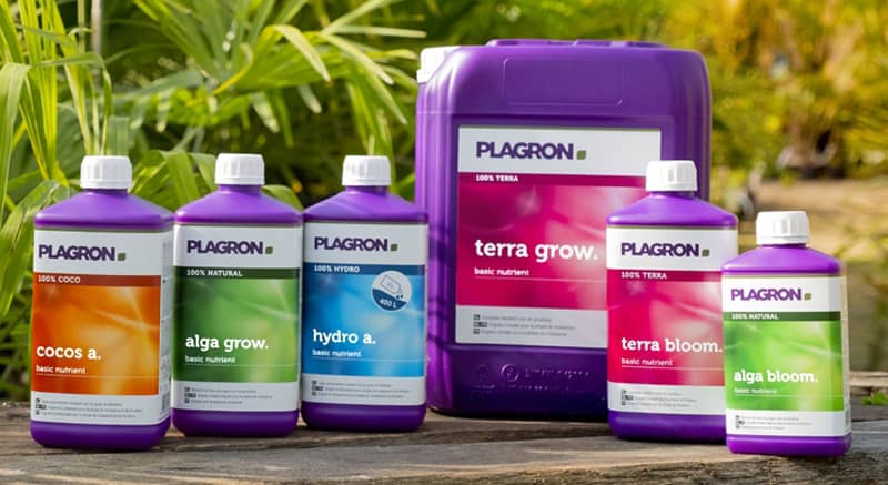 produits plagron auxine jardinerie alternative colmar