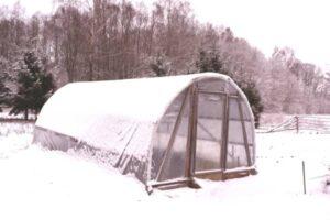serre de jardin gelee en hiver