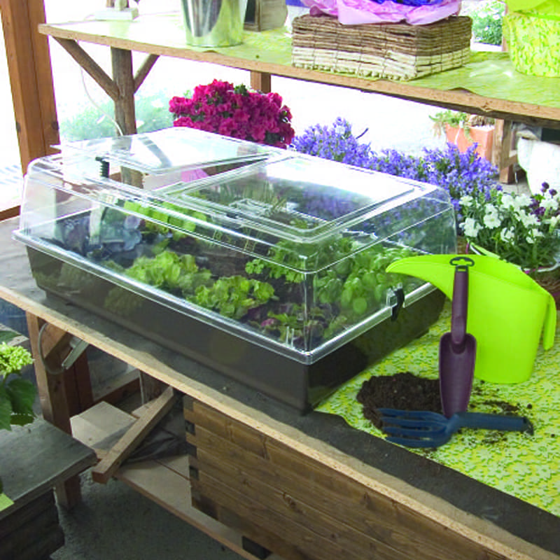 serre marchioro luxor c bouture semis propagation auxine jardinerie alternative colmar