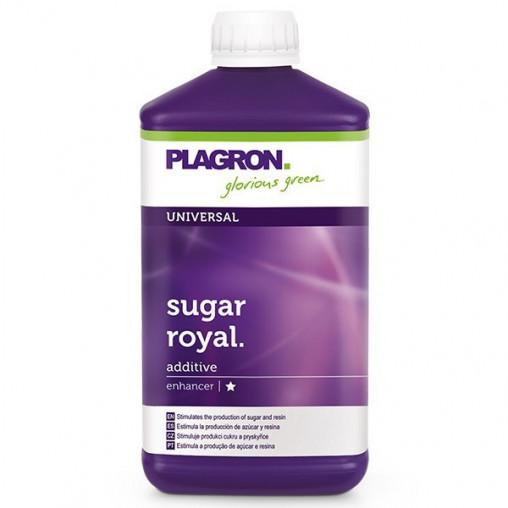 sugar royal l plagron augmente le gout et le sucre